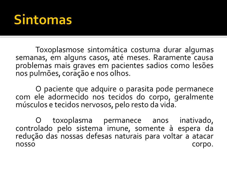 Toxoplasmose sintomática costuma durar algumas semanas, em alguns casos, até meses.
