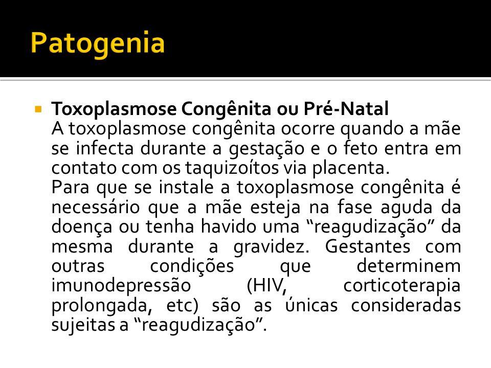 Toxoplasmose Congênita ou Pré-Natal A toxoplasmose congênita ocorre quando a mãe se infecta durante a gestação e o feto entra em contato com os taquizoítos via placenta.
