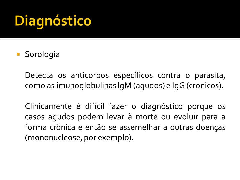 Sorologia Detecta os anticorpos específicos contra o parasita, como as imunoglobulinas lgM (agudos) e IgG (cronicos).