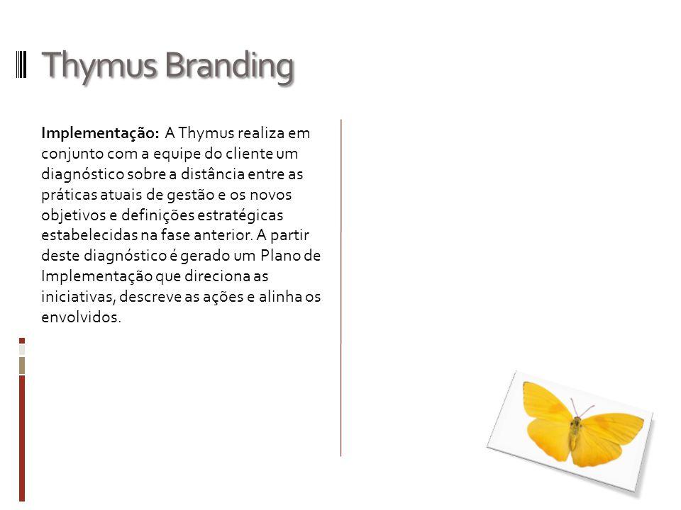 Thymus Branding Implementação: A Thymus realiza em conjunto com a equipe do cliente um diagnóstico sobre a distância entre as práticas atuais de gestã