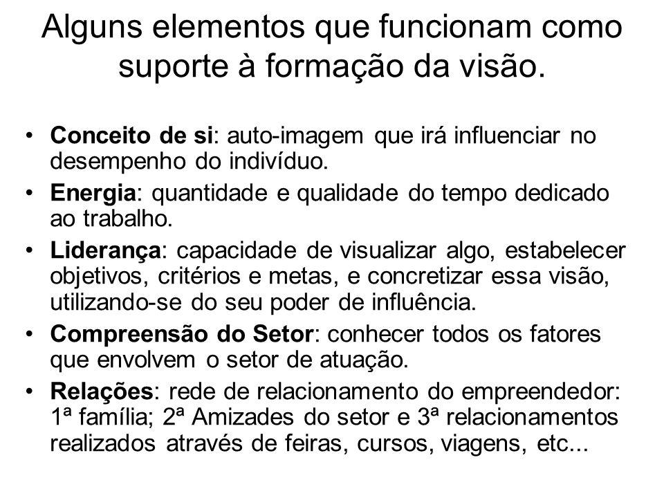 Alguns elementos que funcionam como suporte à formação da visão. Conceito de si: auto-imagem que irá influenciar no desempenho do indivíduo. Energia: