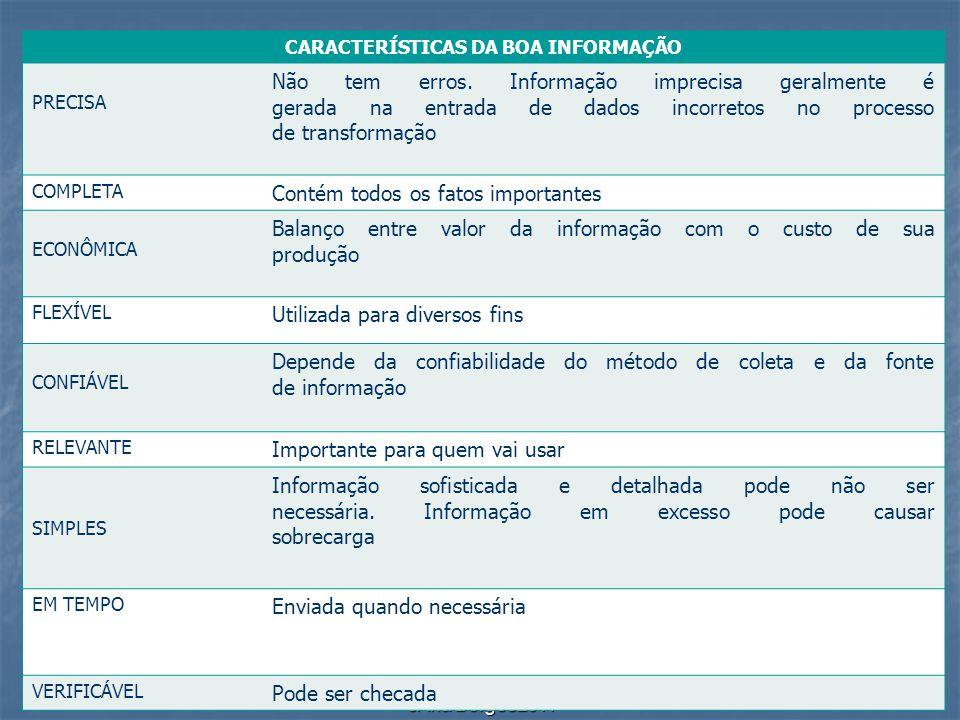 cAna Borges2011 CARACTERÍSTICAS DA BOA INFORMAÇÃO PRECISA Não tem erros. Informação imprecisa geralmente é gerada na entrada de dados incorretos no pr