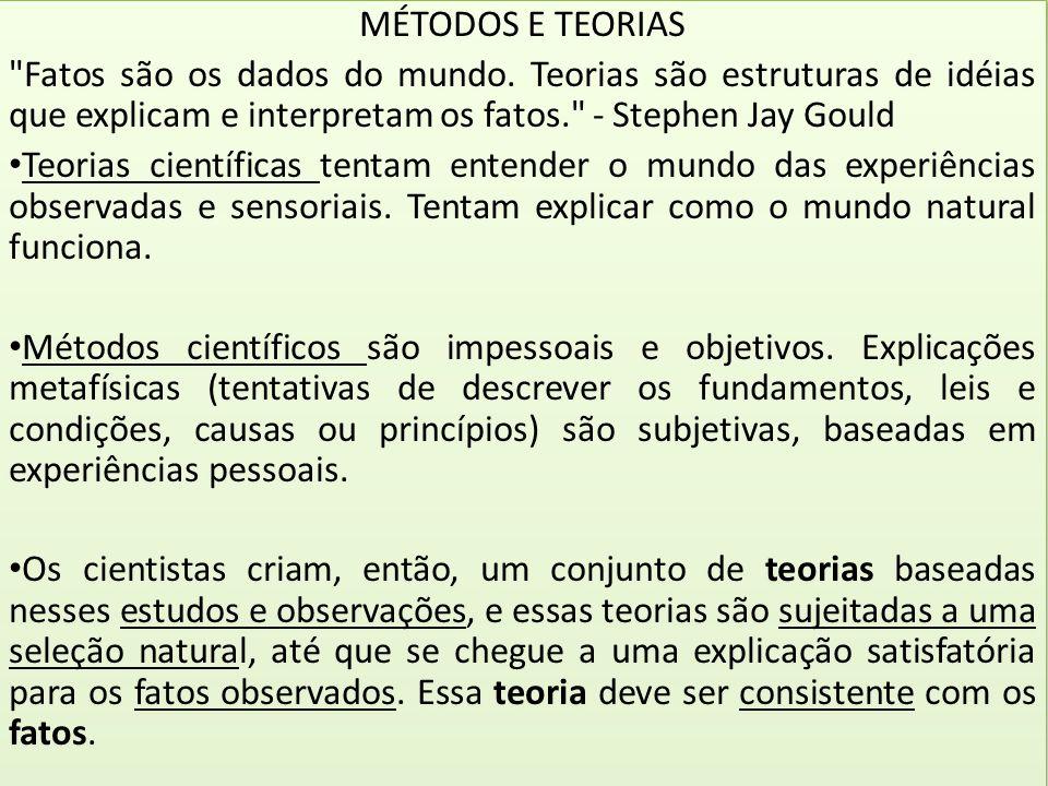 MÉTODOS E TEORIAS
