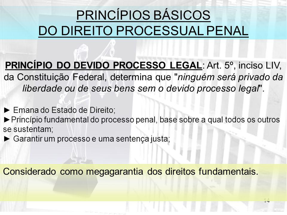 14 PRINCÍPIOS BÁSICOS DO DIREITO PROCESSUAL PENAL PRINCÍPIO DO DEVIDO PROCESSO LEGAL: Art. 5º, inciso LIV, da Constituição Federal, determina que