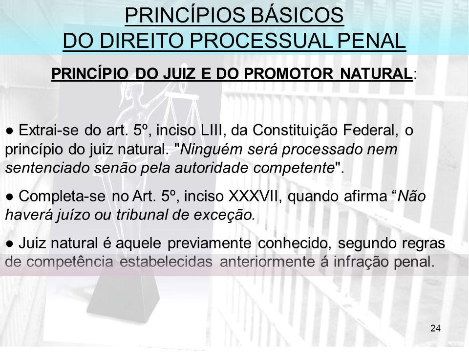 24 PRINCÍPIOS BÁSICOS DO DIREITO PROCESSUAL PENAL PRINCÍPIO DO JUIZ E DO PROMOTOR NATURAL: Extrai-se do art. 5º, inciso LIII, da Constituição Federal,