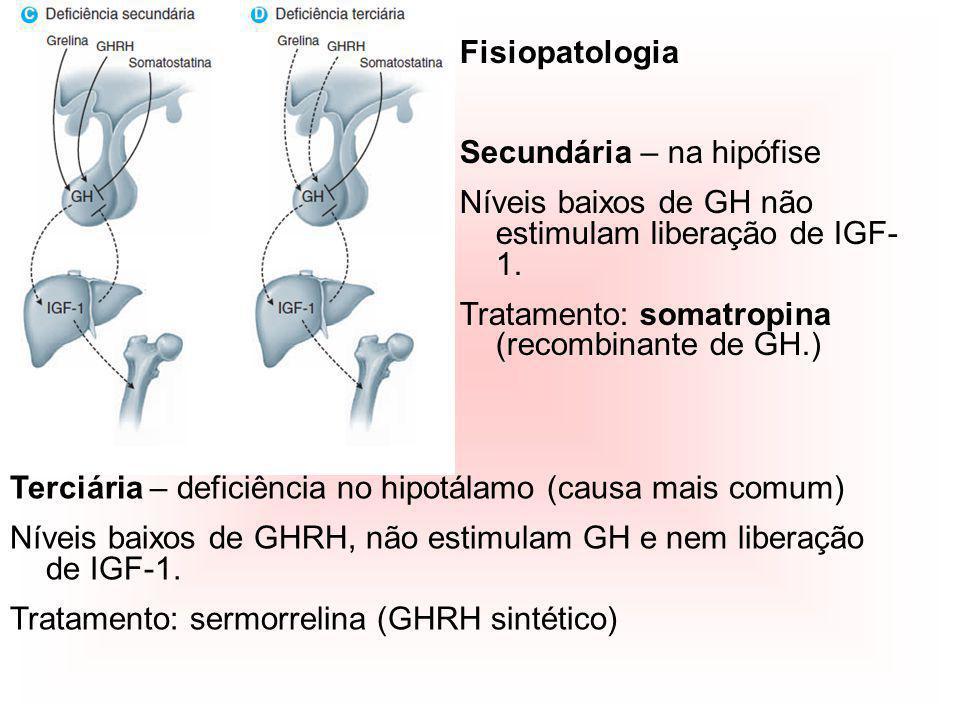 Fisiopatologia Secundária – na hipófise Níveis baixos de GH não estimulam liberação de IGF- 1. Tratamento: somatropina (recombinante de GH.) Terciária