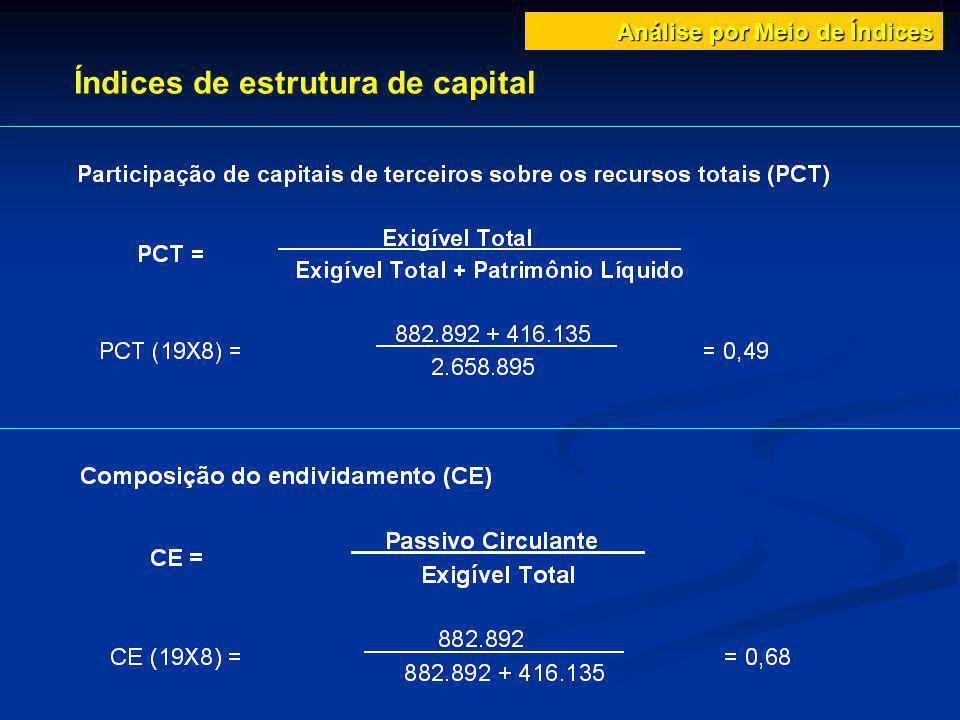 Índices de estrutura de capital Análise por Meio de Índices