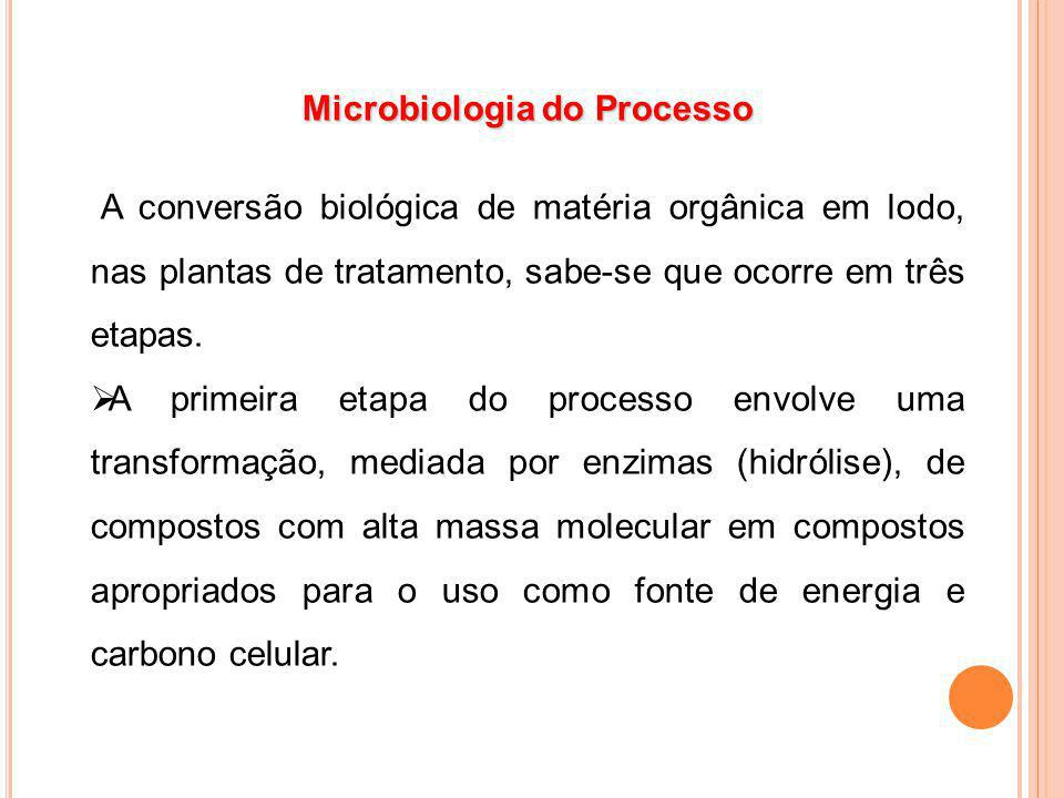 Microbiologia do Processo A conversão biológica de matéria orgânica em lodo, nas plantas de tratamento, sabe-se que ocorre em três etapas. A primeira