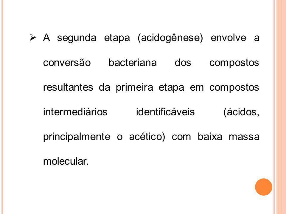 A segunda etapa (acidogênese) envolve a conversão bacteriana dos compostos resultantes da primeira etapa em compostos intermediários identificáveis (á