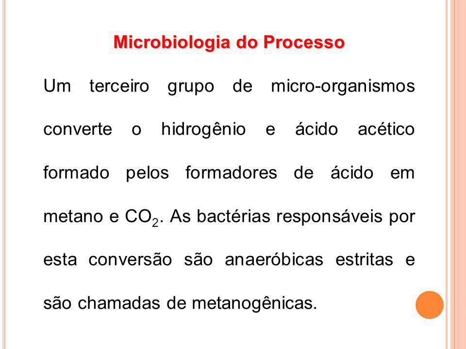 Um terceiro grupo de micro-organismos converte o hidrogênio e ácido acético formado pelos formadores de ácido em metano e CO 2. As bactérias responsáv