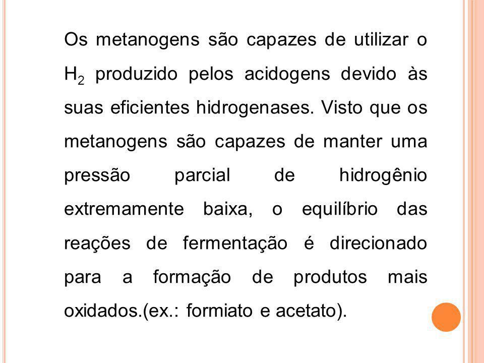 Os metanogens são capazes de utilizar o H 2 produzido pelos acidogens devido às suas eficientes hidrogenases. Visto que os metanogens são capazes de m