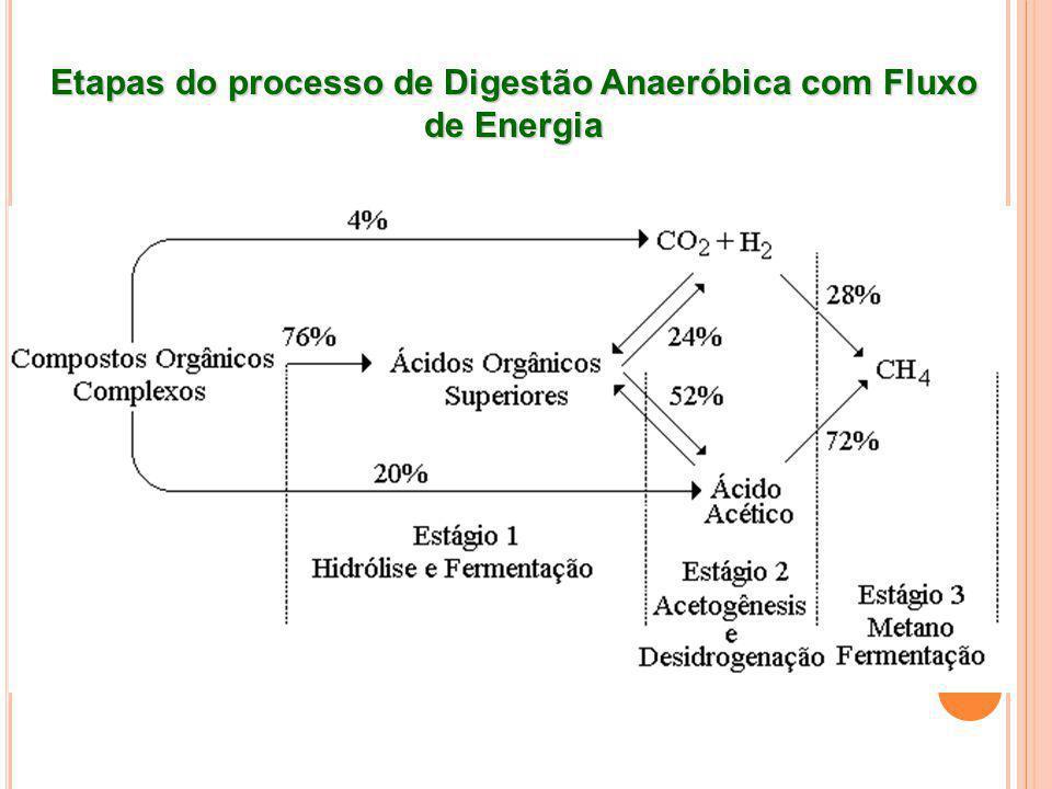 Etapas do processo de Digestão Anaeróbica com Fluxo de Energia