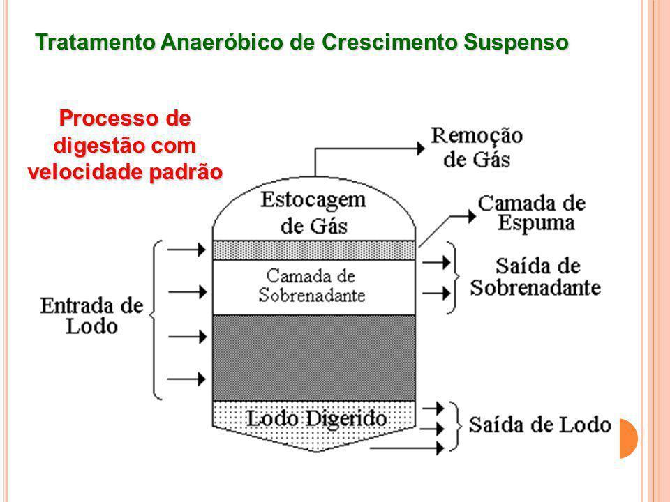 Tratamento Anaeróbico de Crescimento Suspenso Processo de digestão com velocidade padrão