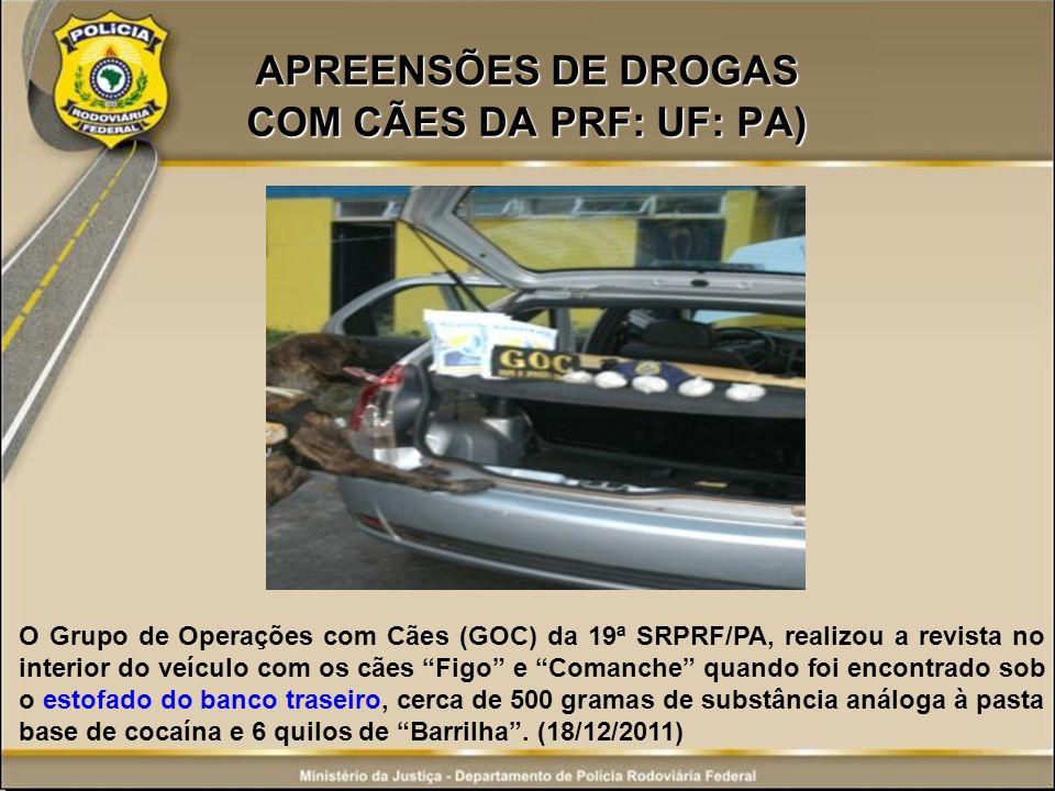 APREENSÕES DE DROGAS COM CÃES DA PRF: UF: PA) O Grupo de Operações com Cães (GOC) da 19ª SRPRF/PA, realizou a revista no interior do veículo com os cã