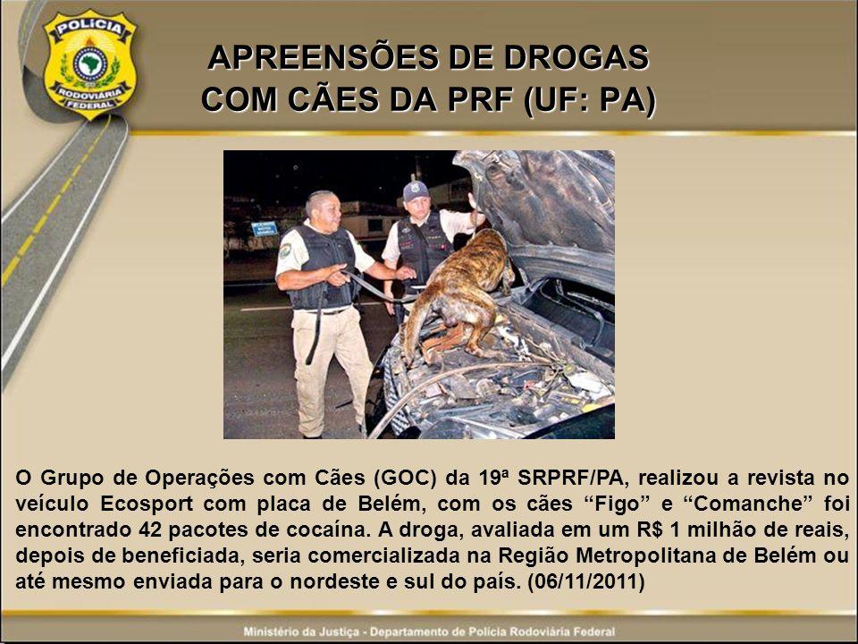 APREENSÕES DE DROGAS COM CÃES DA PRF (UF: PA) O Grupo de Operações com Cães (GOC) da 19ª SRPRF/PA, realizou a revista no veículo Ecosport com placa de