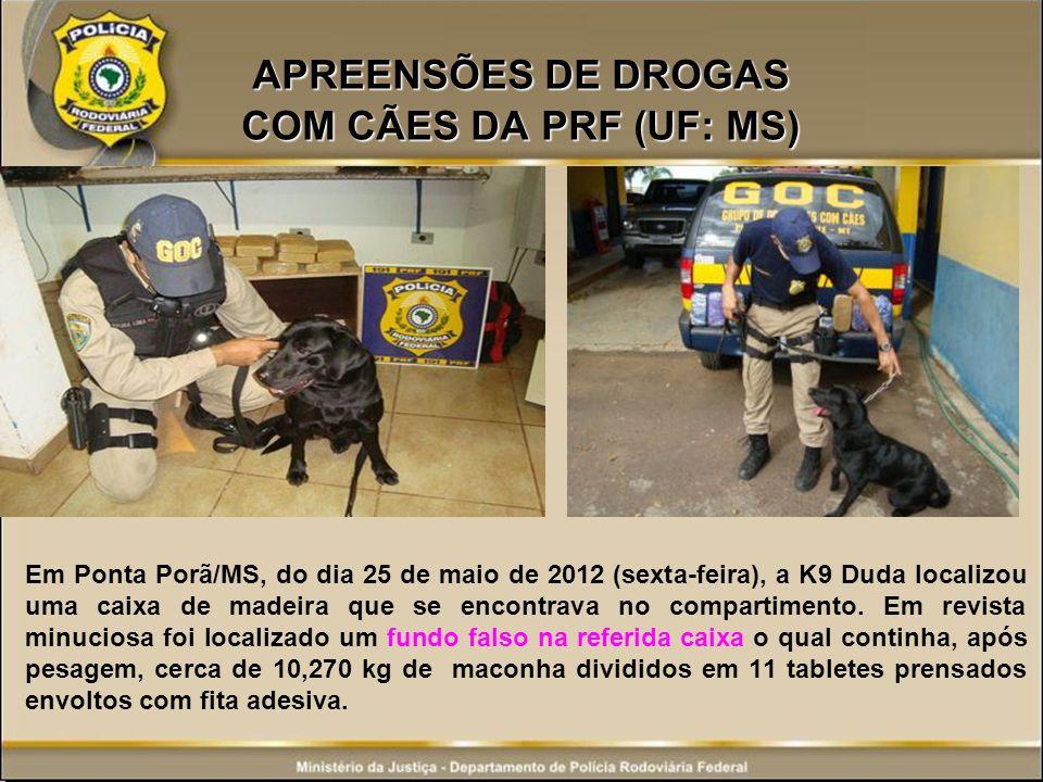 APREENSÕES DE DROGAS COM CÃES DA PRF (UF: MS) Em Ponta Porã/MS, do dia 25 de maio de 2012 (sexta-feira), a K9 Duda localizou uma caixa de madeira que