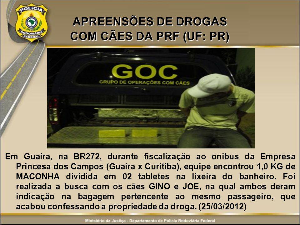APREENSÕES DE DROGAS COM CÃES DA PRF (UF: PR) Em Guaíra, na BR272, durante fiscalização ao onibus da Empresa Princesa dos Campos (Guaira x Curitiba),