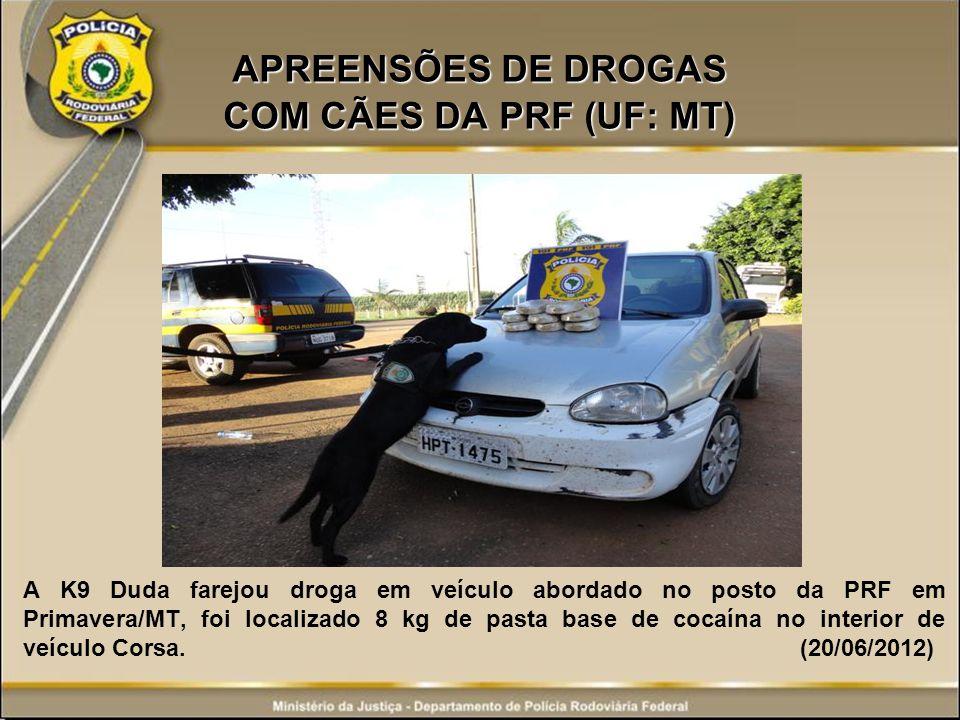 APREENSÕES DE DROGAS COM CÃES DA PRF (UF: MT) A K9 Duda farejou droga em veículo abordado no posto da PRF em Primavera/MT, foi localizado 8 kg de past