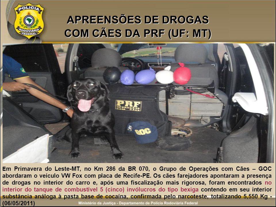 APREENSÕES DE DROGAS COM CÃES DA PRF (UF: MT) E m Primavera do Leste-MT, no Km 286 da BR 070, o Grupo de Operações com Cães – GOC abordaram o veículo