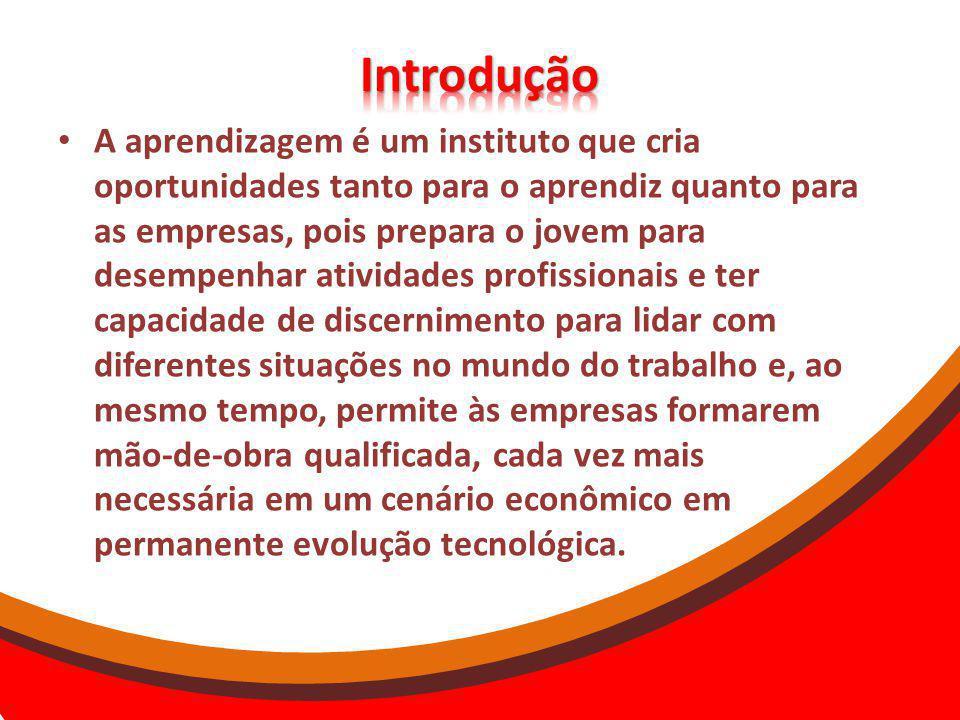 A aprendizagem é um instituto que cria oportunidades tanto para o aprendiz quanto para as empresas, pois prepara o jovem para desempenhar atividades p