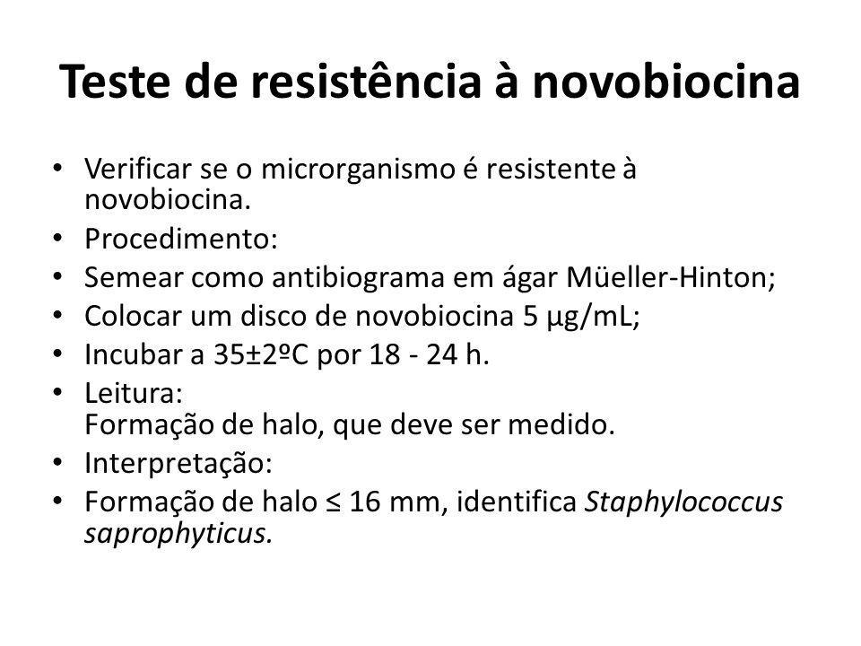 Teste de resistência à novobiocina Verificar se o microrganismo é resistente à novobiocina. Procedimento: Semear como antibiograma em ágar Müeller-Hin