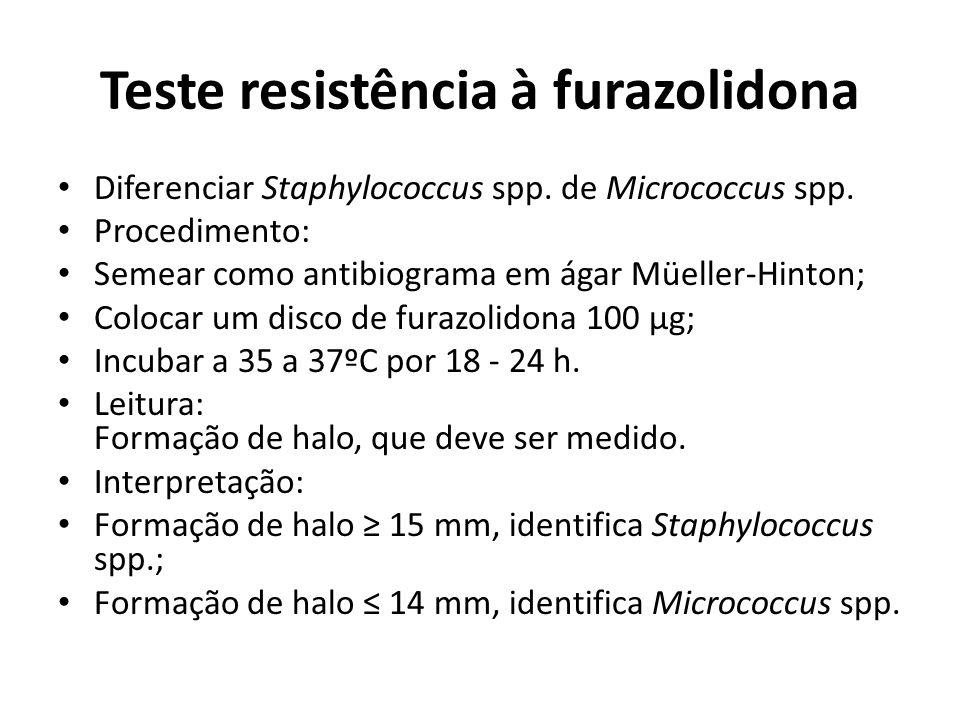 Teste resistência à furazolidona Diferenciar Staphylococcus spp. de Micrococcus spp. Procedimento: Semear como antibiograma em ágar Müeller-Hinton; Co