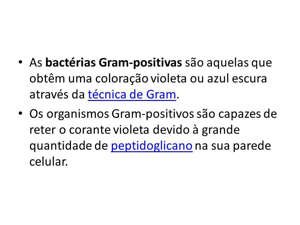 As bactérias Gram-positivas são aquelas que obtêm uma coloração violeta ou azul escura através da técnica de Gram.técnica de Gram Os organismos Gram-p