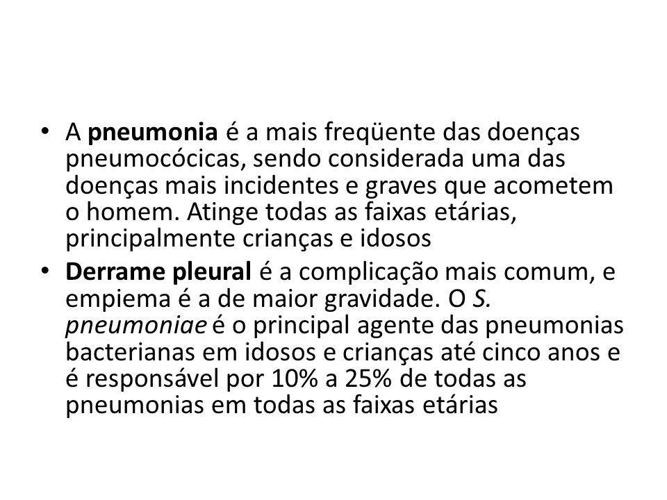 A pneumonia é a mais freqüente das doenças pneumocócicas, sendo considerada uma das doenças mais incidentes e graves que acometem o homem. Atinge toda