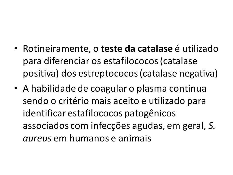 Rotineiramente, o teste da catalase é utilizado para diferenciar os estafilococos (catalase positiva) dos estreptococos (catalase negativa) A habilida