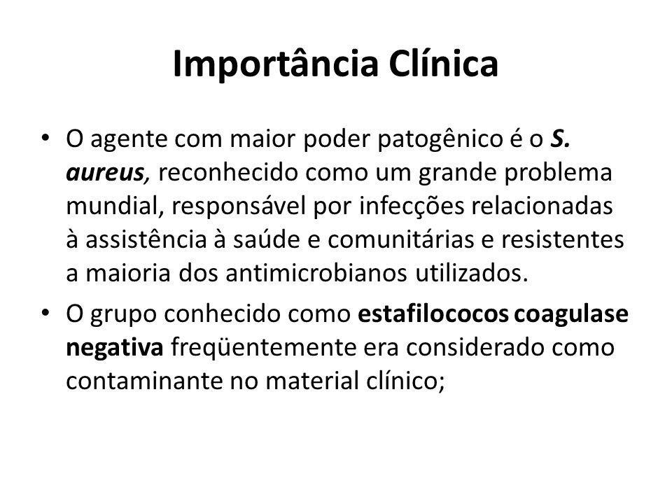 Importância Clínica O agente com maior poder patogênico é o S. aureus, reconhecido como um grande problema mundial, responsável por infecções relacion