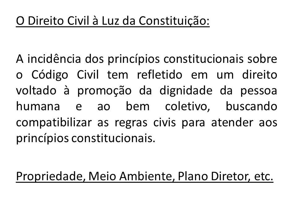 O Direito Civil à Luz da Constituição: A incidência dos princípios constitucionais sobre o Código Civil tem refletido em um direito voltado à promoção