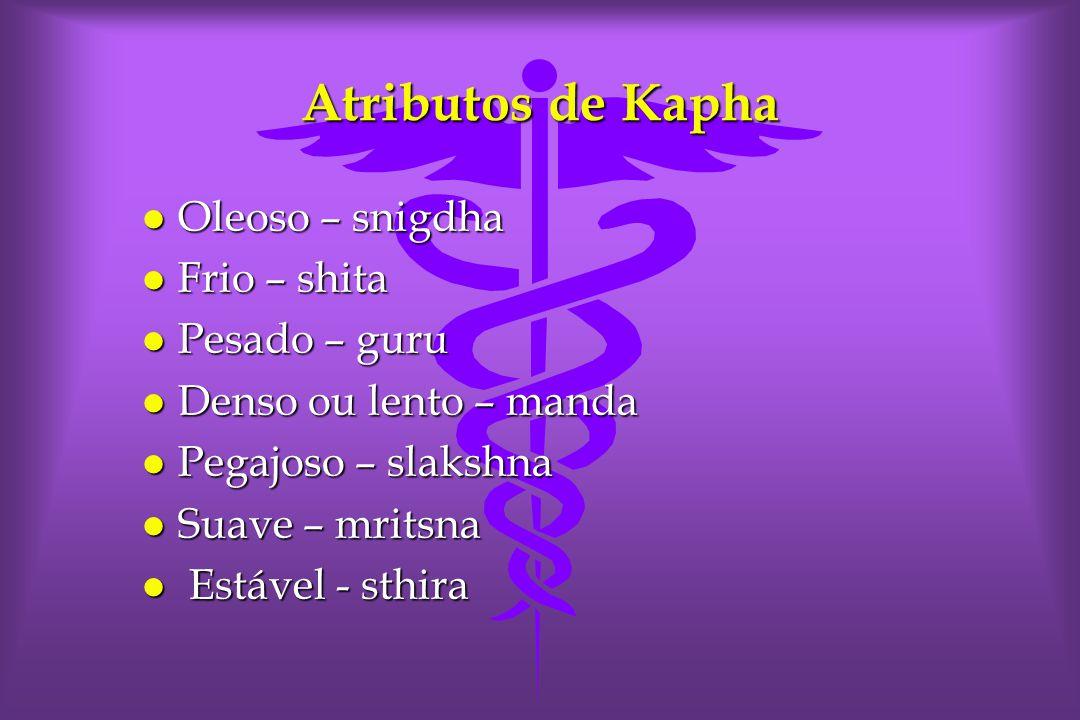 Atributos de Kapha l Oleoso – snigdha l Frio – shita l Pesado – guru l Denso ou lento – manda l Pegajoso – slakshna l Suave – mritsna l Estável - sthira
