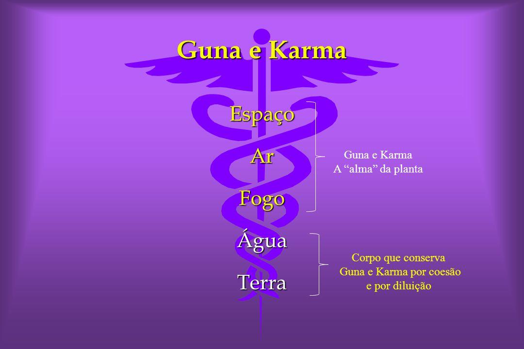 Guna e Karma EspaçoArFogoÁguaTerra A alma da planta Corpo que conserva Guna e Karma por coesão e por diluição