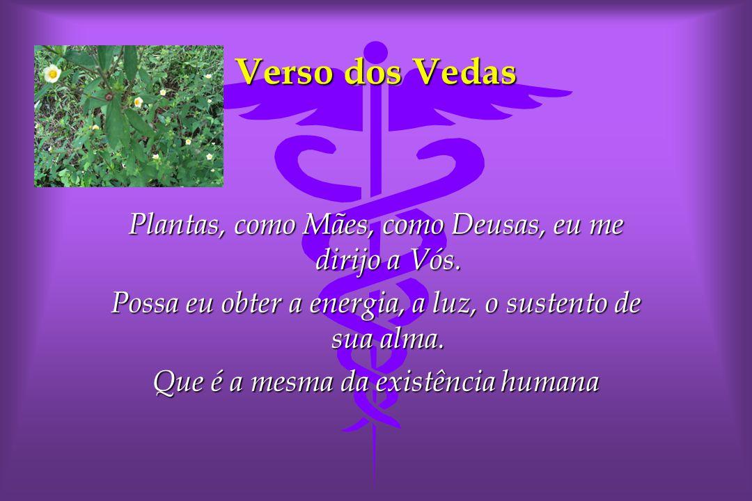 Verso dos Vedas Plantas, como Mães, como Deusas, eu me dirijo a Vós.