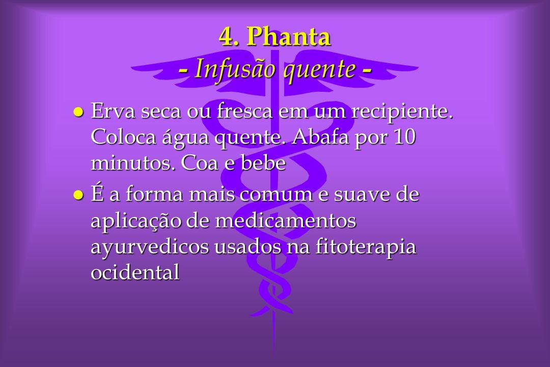 4.Phanta - Infusão quente - l Erva seca ou fresca em um recipiente.