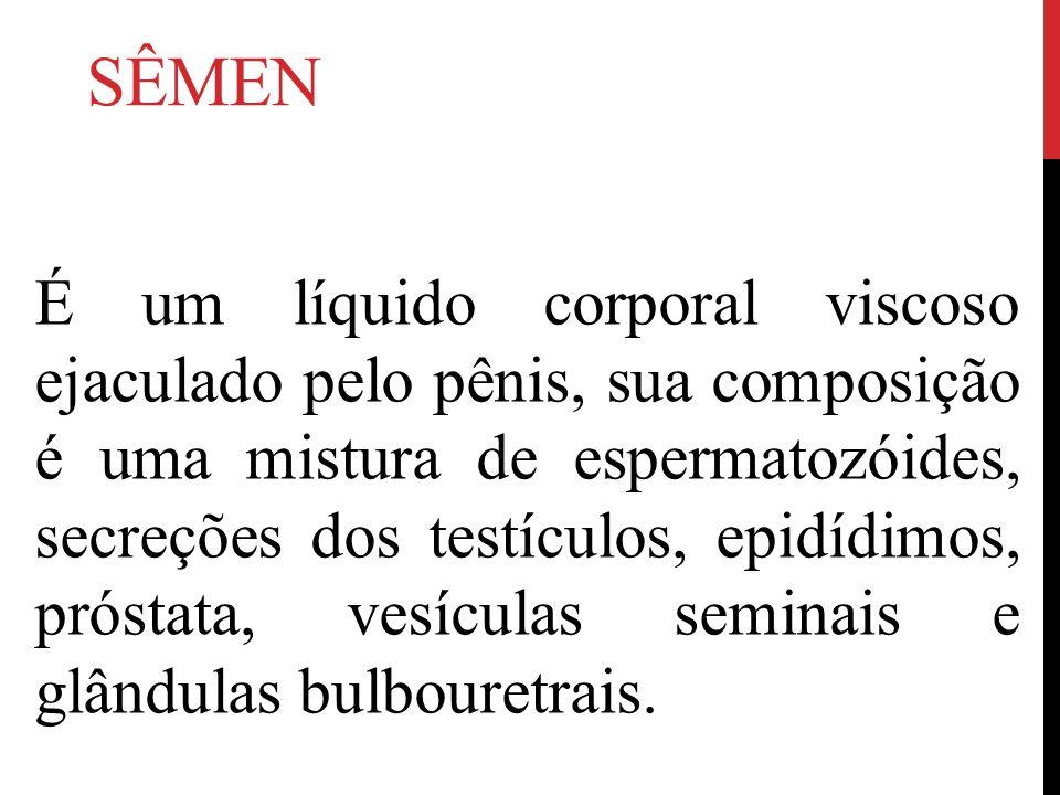 SÊMEN É um líquido corporal viscoso ejaculado pelo pênis, sua composição é uma mistura de espermatozóides, secreções dos testículos, epidídimos, próstata, vesículas seminais e glândulas bulbouretrais.
