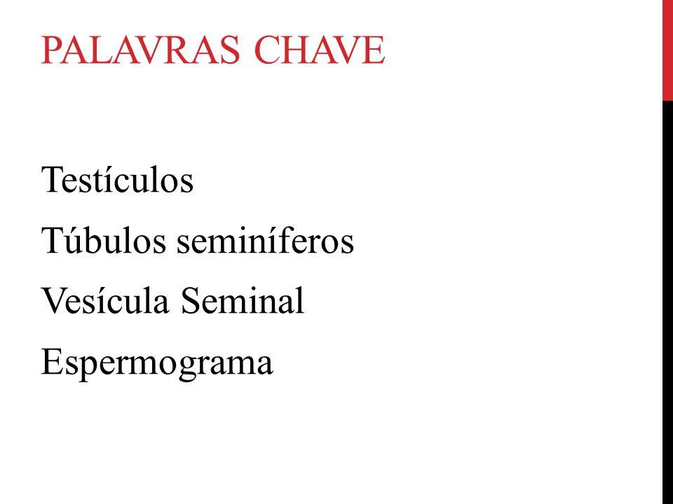PALAVRAS CHAVE Testículos Túbulos seminíferos Vesícula Seminal Espermograma