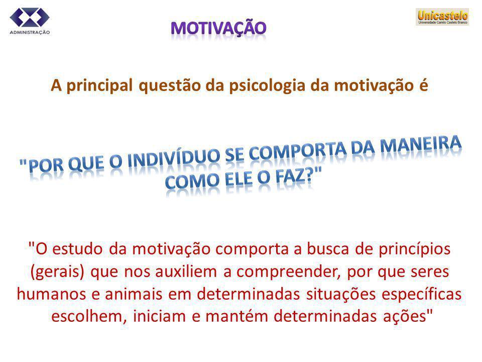 A principal questão da psicologia da motivação é