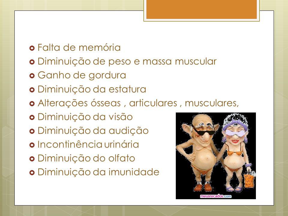 Falta de memória Diminuição de peso e massa muscular Ganho de gordura Diminuição da estatura Alterações ósseas, articulares, musculares, Diminuição da visão Diminuição da audição Incontinência urinária Diminuição do olfato Diminuição da imunidade