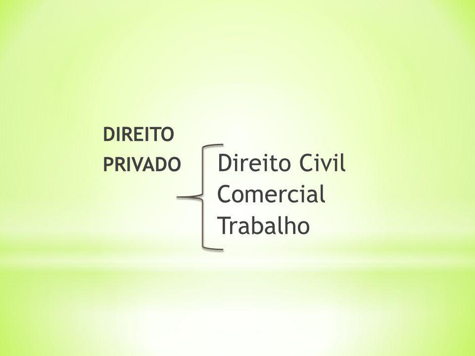 DIREITO PRIVADO Direito Civil Comercial Trabalho