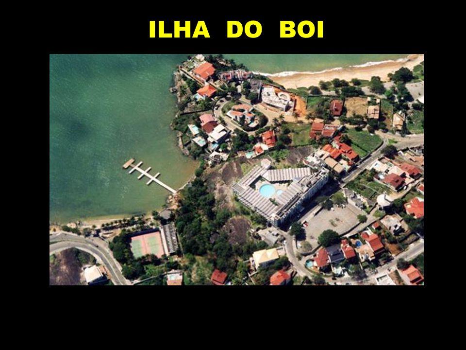 ILHA DO BOI