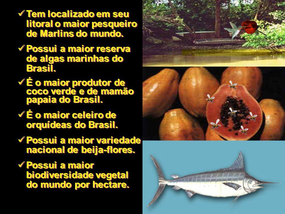 Tem localizado em seu litoral o maior pesqueiro de Marlins do mundo. Possui a maior reserva de algas marinhas do Brasil. É o maior produtor de coco ve