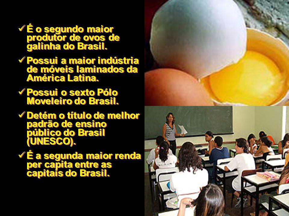 É o segundo maior produtor de ovos de galinha do Brasil. Possui a maior indústria de móveis laminados da América Latina. Possui o sexto Pólo Moveleiro