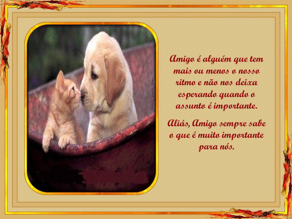 Amigo é alguém que tem mais ou menos o nosso ritmo e não nos deixa esperando quando o assunto é importante.
