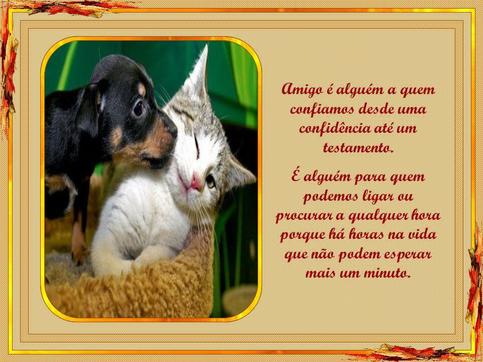 Amigo é alguém a quem confiamos desde uma confidência até um testamento.
