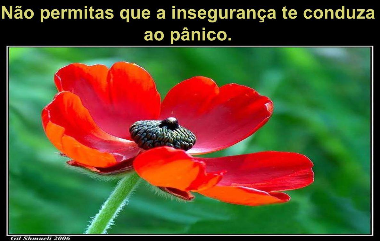 Não permitas que a insegurança te conduza ao pânico.