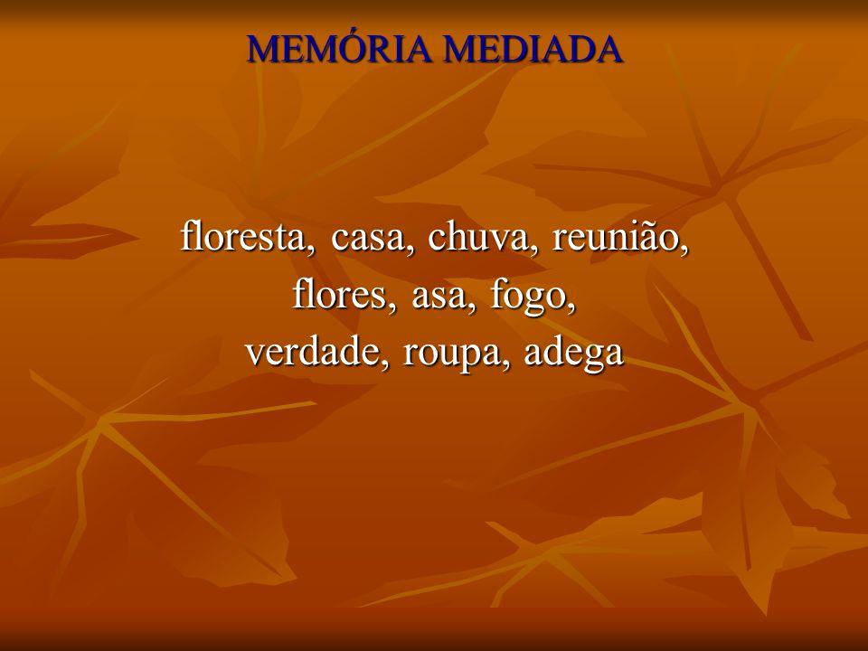 MEMÓRIA MEDIADA floresta, casa, chuva, reunião, flores, asa, fogo, verdade, roupa, adega
