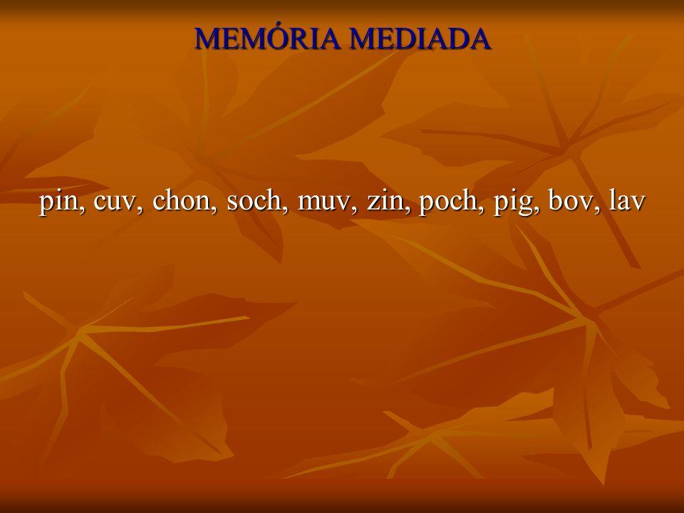 MEMÓRIA MEDIADA pin, cuv, chon, soch, muv, zin, poch, pig, bov, lav