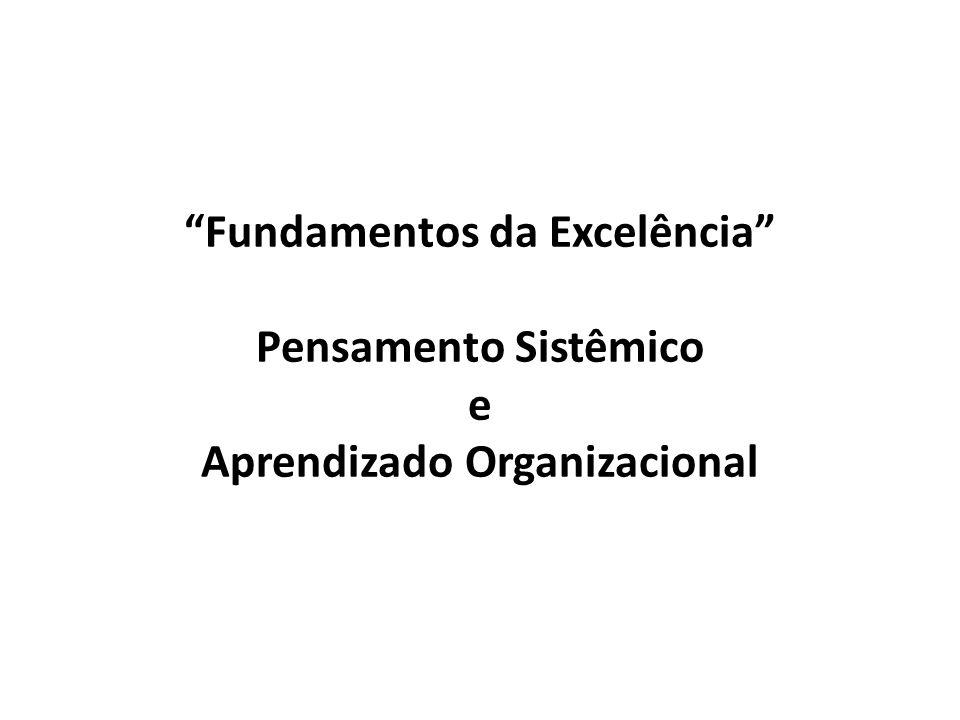 Fundamentos da Excelência Pensamento Sistêmico e Aprendizado Organizacional