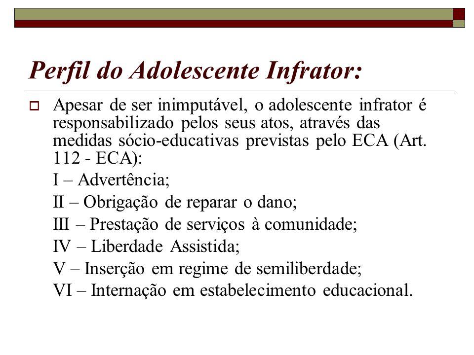 Perfil do Adolescente Infrator: Apesar de ser inimputável, o adolescente infrator é responsabilizado pelos seus atos, através das medidas sócio-educat